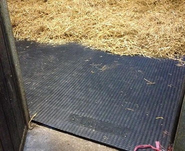 Horse Stable & Wall Mats